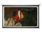 Nástěnné projekční plátno NOBO, 177 x 100cm (16:9)